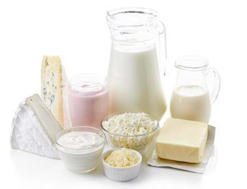 Service - Dairy products
