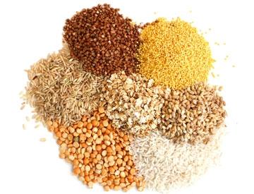 Service - Grains | Nuts | Rice | Flour
